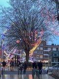 Christmass hjul och ett stort träd på gatan av den europeiska staden royaltyfri fotografi