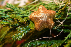 Christmass star Royalty Free Stock Photography