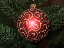Christmass toy. Red, against dark green branches of a Christmass tree Stock Photos