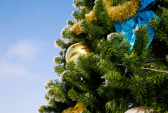 Christmass tree Royalty Free Stock Photo