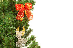 Christmass tree branches with angel  and ribbons Stock Photo