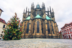 Christmass tree and St. Vitus cathedral in Prague Castle Royalty Free Stock Photo