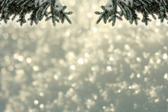 Christmassy or wintry background Stock Photos