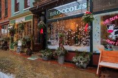 Christmastime 2017 в Трое NY городском во время шторма снега Стоковые Фото