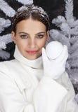christmastime Imagens de Stock Royalty Free