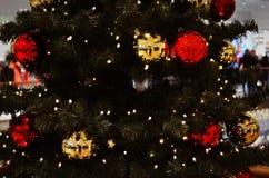 Christmastree Fotografering för Bildbyråer