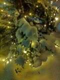 Christmastree Lapland. Christmas snow winter decoration exterior lights magic awesome arctic circle arcticcircle enontekio finland travel traveling Royalty Free Stock Images