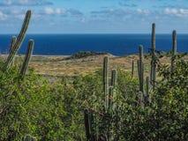 Christoffel国家公园库拉索岛景色 库存照片