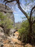 Christoffel National Park. Curacao a Caribbean island in the Dutch Antilles Royalty Free Stock Images