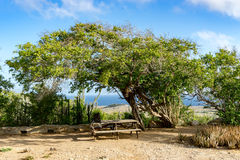 Christoffel National park. Views around Curacao a small island in the Caribbean Stock Photo