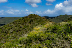 Christoffel National park views Stock Photo