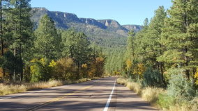 Christopher Creek Loop Payson Arizona royaltyfri bild