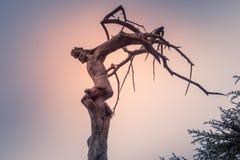Christus-` s Kreuzigung schnitzte in einen Baum im Libanon lizenzfreie stockbilder