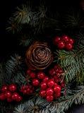 Chritsmas με το pinecone Στοκ Εικόνες