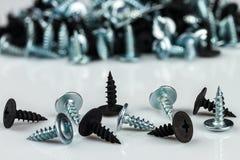Chrom de prata e parafusos anodizados preto Foto de Stock