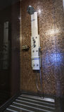 Chrom matrycujący kropi prysznic z natryskownicami przy kafelkową ścianą Fotografia Stock