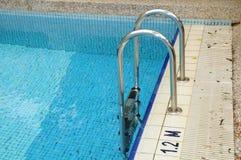 Chrom-Strichleiter des Swimmingpools Lizenzfreie Stockfotografie