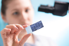 Chromatogram sequencing Stock Image