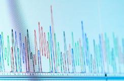 Chromatogramme d'ADN Photographie stock libre de droits