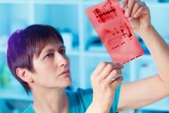 Chromatography genetic fingerprinting royalty free stock images