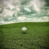 Chrome ball on green grass Royalty Free Stock Photos