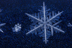 Chrome Blue Snowflake. Real Snowflakes shot on top of blue chrome car Royalty Free Stock Photo