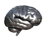 Chrome Brain. A 3D Chrome Reflective brain  isolated on a White background Royalty Free Stock Image