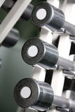 Chrome dumbbells in a row Stock Photo