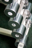 Chrome dumbbells in a row. Shiny chrome dumbbells in a row in gym Royalty Free Stock Photos