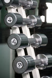 Chrome dumbbells in a row. On stand Stock Photography
