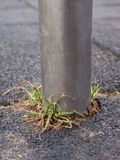 Chrome pole in flexible tile for playground. Flexible floo Stock Photography