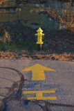 Chrome Yellow Fire Hydrant Royalty Free Stock Images