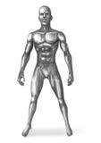 Chromeman Standing Royalty Free Stock Images
