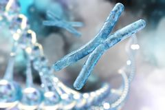 Chromosom und DNA vektor abbildung