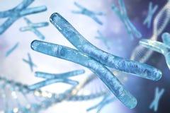 Chromosom und DNA stock abbildung