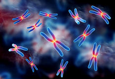 Chromosome Image stock