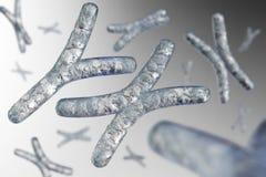 chromosome ilustração royalty free