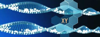 Chromosome X, ADN en spirale, rendu 3d illustration stock