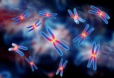 Chromosome. Digital illustration of chromosome in colour background stock image