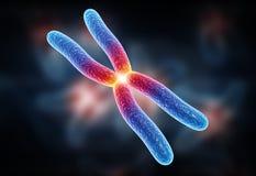 Chromosome. Digital illustration of chromosome in digital background royalty free stock image