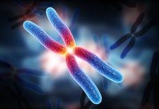 Chromosome. Digital illustration of chromosome in digital background stock photo