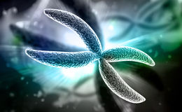 Chromosome. Digital illustration of Chromosome in digital background Royalty Free Stock Photo