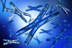 Chromosome. DNA. Chromosome. Beautiful medical background with blur royalty free illustration