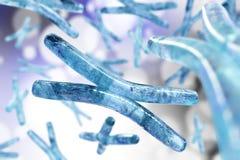 Chromosome. DNA. Chromosome. Beautiful medical background with blur stock illustration