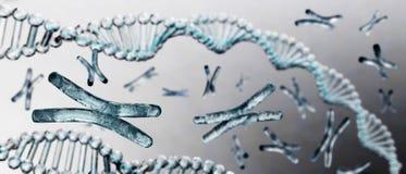 Chromosome, DNA. Scientific background, beautiful blur stock image