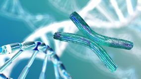 Chromosome, DNA Stock Images