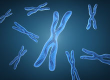 Chromosome x and DNA Strands. 3D image Stock Images