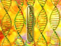 chromosome Espiral do ADN genome ilustração do vetor