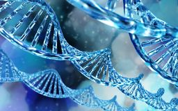 chromosome Espiral do ADN genome ilustração royalty free