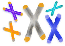 Chromosome on a white background. Human chromosome on a white background. Vector illustration. Set for design Stock Image